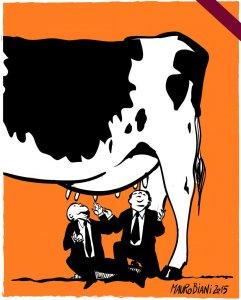 mafia-capitale-mucca